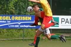 Schwerin44