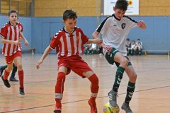 Palmberg_Cup_D_037